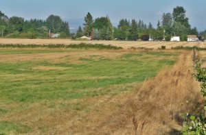 Willamette Valley Farms for Sale