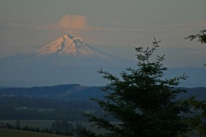 View of MT Hood from property