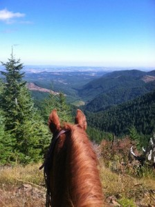 Willamette Valley View from horseback.